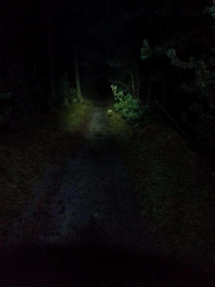 Lopen in het donker
